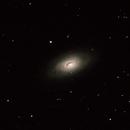Black Eye Galaxy M 64,                                David Holko