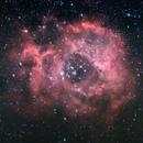Rosette nebula,                                Stijn
