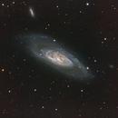 M106,                                Andrew Barton