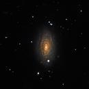 M63 - Sunflower Galaxy,                                Jason Schella
