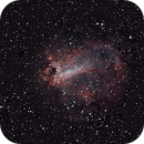 The Swan Nebula,                                Leslie Rose