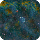 Crescent Nebula (NGC 6888) Hubble Palette with True Stars,                                Miles Zhou