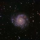M74,                                Colin McGill