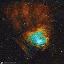 NGC1491 - The Fossil Footprint Nebula,                                Vincent Savioz