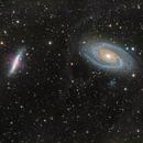 Bode's Nebulae - Messier 81 & 82,                                Miles Zhou