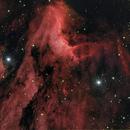 The Pelican Nebula,                                Patrick Prokop