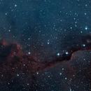 IC 1396 LA TROMPA DEL ELEFANTE,                                GONZALO