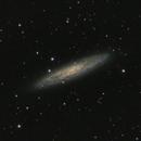 NGC 253 - Sculptor Galaxy,                                Joe Fox
