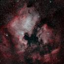 North America and Pelican Nebulae,                                Spencer Hochstetler
