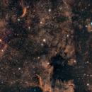NGC 7000,                                Brutek