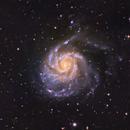 M-101, the Pinwheel galaxy,                                Jorge Garcia