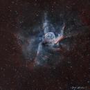 The Thor Helmets, NGC 2359,                                Astrofotografia A.R.B.