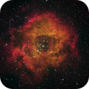 Rosette Nebula in Narrowband Filters,                                Dick Krause