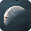 Mondbesucher,                                  Silkanni Forrer