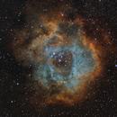 Rosette Nebula in SHO,                                Chris Massa
