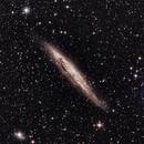 NGC 4945,                                Scotty Bishop