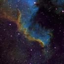 North America Nebula,                                antonenright