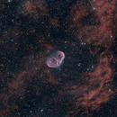 Crescent and Soap Bubble Nebulae,                                Stefano Franzoni