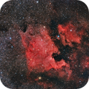 North America Nebula (NGC700) and Pelican Nebula (IC5070) wide field,                                Santiago Rodrígue...