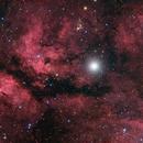 IC 1318 (also Known as Sadr region),                                  Miles Zhou