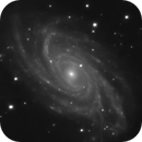 NGC2336,                                Romain Chauvet
