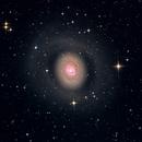 M94 Croc's Eye Galaxy,                                Ricardo Pereira