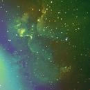 NGC 7380 The Wizard Nebula,                    Gus Tepper