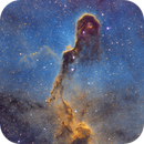 21 Hours on the Elephant Trunk (Hubble Palette),                                John Hayes