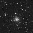NGC 7006 L,                                antares47110815