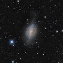 NGC 3521,                                Samuel