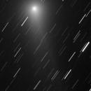 Comet C/2013 R1 (Lovejoy),                                Paulo  Lobao