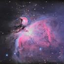 M42 Orion Nebula 2020,                                Michael Broyles