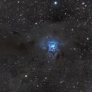 Iris Nebula,                                  Jeremy Scheere