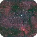 IC1396,                                Patric Benedetti