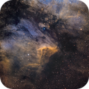 Ic 5070 Pelican Nebula,                                Bert Scheuneman