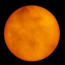 The Sun,                                Eduardo Castro