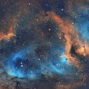 Soul Nebula SHO,                                Sean Molony