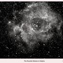 The Rosette Nebula in H alpha,                                  Lawrence E. Hazel