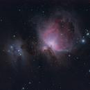 Orion nebula,                                DomLeBarde