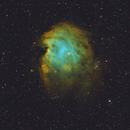 NGC 2174 - 102mm APO,                                Andrew Burwell