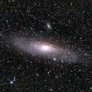The Large Andromeda Galaxy,                                Nico Augustin