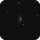 NGC 5033,                                Josef Büchsenmeister