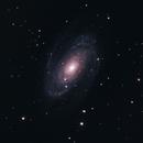 M81 Bode's Galaxy,                                Maxweeje