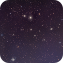 Fornax Galaxies,                                David Nguyen