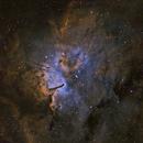 NGC 6823 HaSHO,                                Rodd Dryfoos