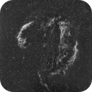 Veil Nebula in Ha,                                William Jordan