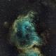 IC1848 soul nebula,                                arjan brussee