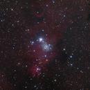 NGC 2264 Wide Field,                                Dean Jacobsen