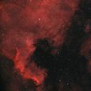 NGC 7000, der Nordamerikanebel,                                Peter Schmitz