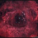 Rosette Nebula HOO - Asi 1600mm,                                quercus